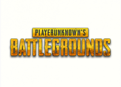 G. PUBG - Steam CD key